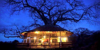 Tarangire Treetops Room Exterior4