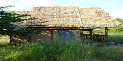 Tembo Tarangire Lodge 012