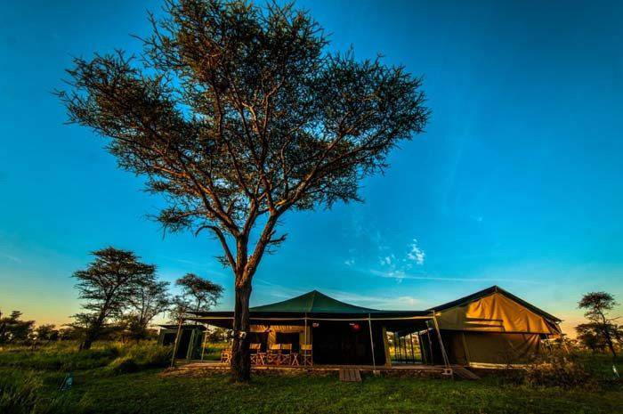 Angata Serengeti Camp 03
