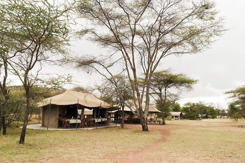 Serengeti Kati Kati 8 800